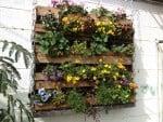 6 ideias de jardins verticais baratos e bonitos