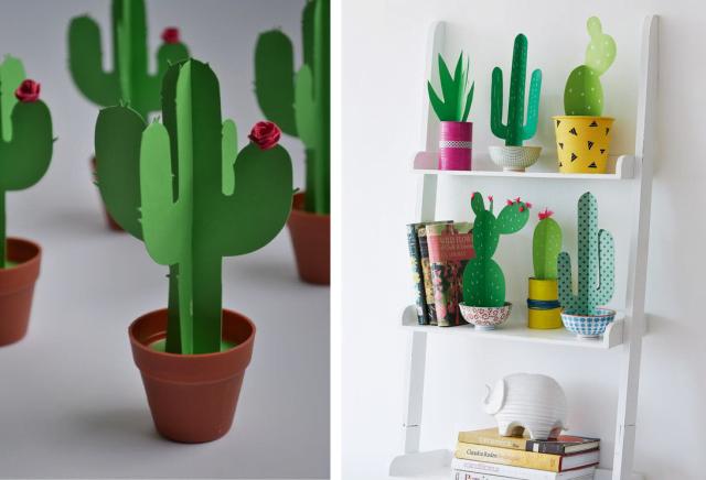 cactus na decoração 3031