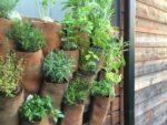 Faça Você Mesmo: Horta vertical com mangueira de bombeiro