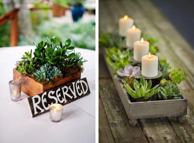 6 maneiras de decorar a casa com suculentas Simplichique -> Enfeites De Mesa Para Casamento Com Suculentas