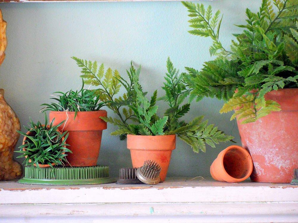 plantas na decoração 01