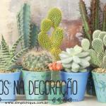 Cactos na decoração: inspire-se com essas dicas!
