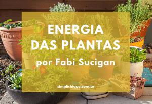 A energia das plantas de acordo com o Feng Shui