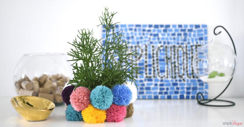 vasinho de plantas